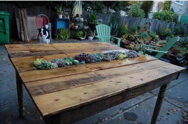 pallet table with succulents