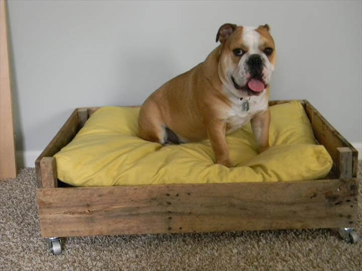 dog bed from wood pallet