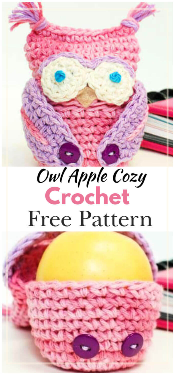 Free Crochet Owl Apple Cozy Pattern